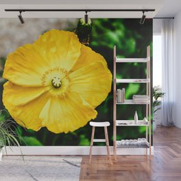Flower Photography by RedTiger_K Wall Mural