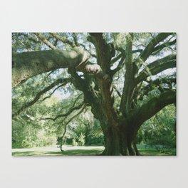 lancaster Canvas Print