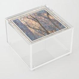 WARM WINTER WALLS OF ZION CANYON Acrylic Box