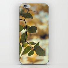 last of the green iPhone & iPod Skin
