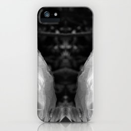 Distant Hieronymus iPhone Case