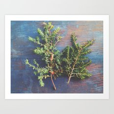 Hemlock on Blue Table Art Print