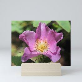 One Wild Rose Mini Art Print