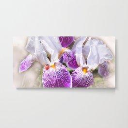 Gladiolus and ladybug Metal Print