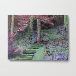 Enchanted Trail Metal Print