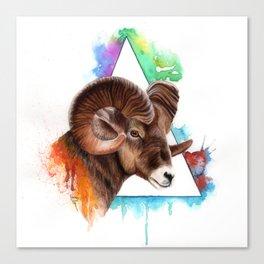 Bighorn Sheep Canvas Print