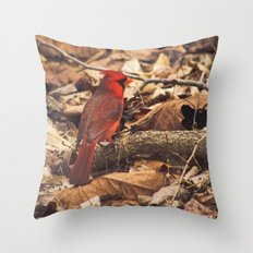 Bird of Ohio Throw Pillow