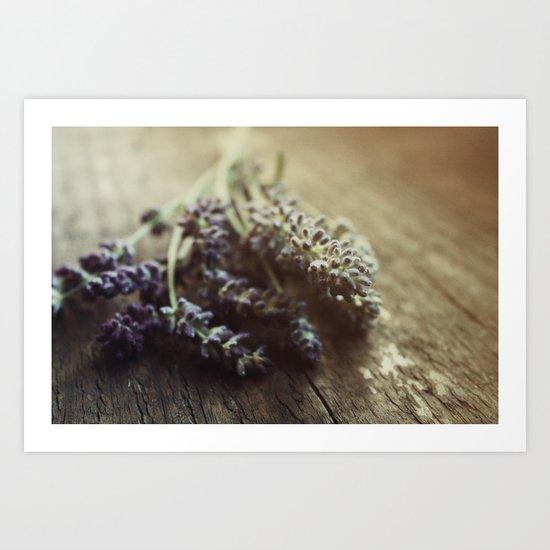 Lavender Morning Art Print