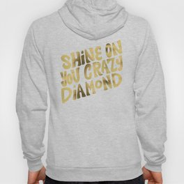 Shine On You Crazy Diamond – Gold Palette Hoody