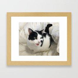 Happy Chappy Framed Art Print