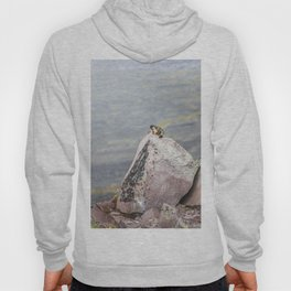 Extremal Groundhog  or King of the Mountain Hoody