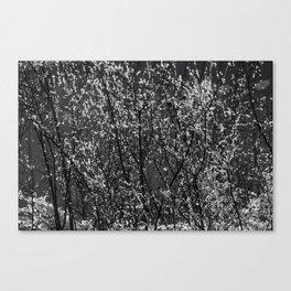 Icy Days NO8 Canvas Print