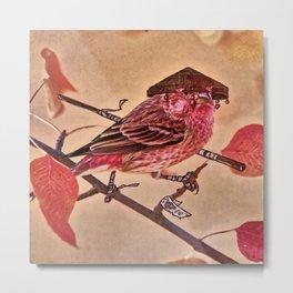 Birds In Armor 3 Metal Print