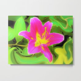 Dramatic Deep Pink and Yellow Lily on Green Metal Print
