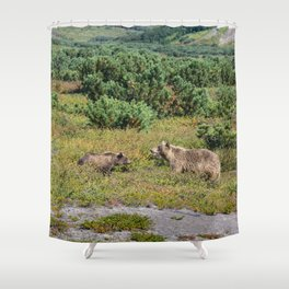 Kamchatka brown bears (mother and cub) Shower Curtain
