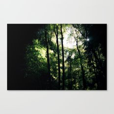 Inside the Cave Canvas Print