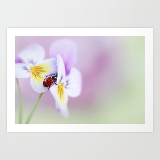 Ladybird... Art Print