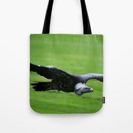 Great vulture in flight Tote Bag