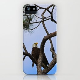 Harriet of Fort Myers iPhone Case