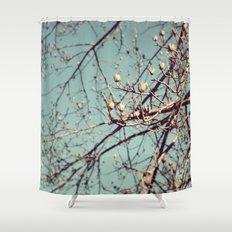 Mountain Nature Shower Curtain