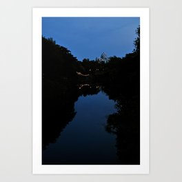 Expedition Everest (Night Time) Art Print