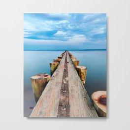 Path to Sea Metal Print