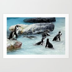 Penguins. Art Print