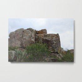 Mountain and Cactus overlay Metal Print