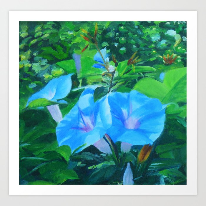 Morning Glory Flowers Art Print