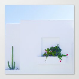 Cacti and flower on wall Canvas Print