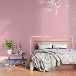 Pink Colour Blocks Wallpaper