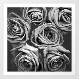 BW Roses Art Print