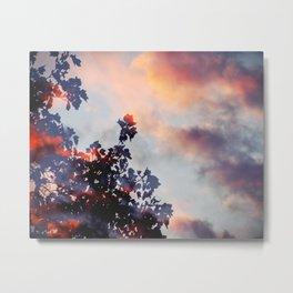 Exclusion Sky Metal Print