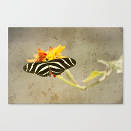 Vintage Butterfly Canvas Print
