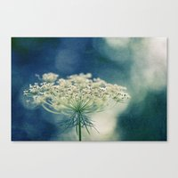 lace Canvas Prints featuring Lace by Sandra Arduini