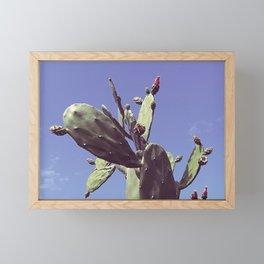 01_Cactus#retro#film#effect Framed Mini Art Print