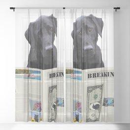 Black Labrador Dog - Breaking News Newspaper  Sheer Curtain