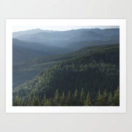 PNW Forest Adventure III - Nature Photography Art Print