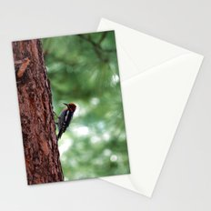 Red-naped Woodpecker Stationery Cards