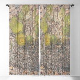 Desert Cacti in Bloom - 5 Sheer Curtain