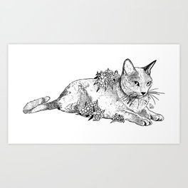Cat and acacias Art Print