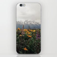 Wildflowers and Mountains - Summer in the Tetons iPhone & iPod Skin