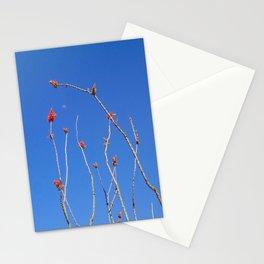 Ocotillo Moon Stationery Cards