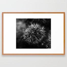 Black Moss Framed Art Print