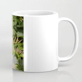 Autumnal Fern Coffee Mug