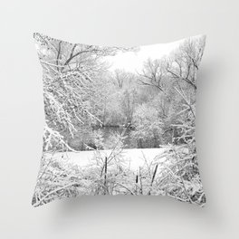 Winter Snow At Huron River Throw Pillow