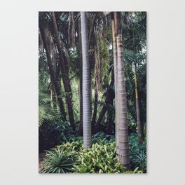 Urban Palm Tree Forest Canvas Print