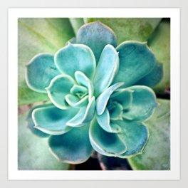 Blue Succulent Art Print
