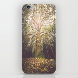 The taller we are iPhone Skin