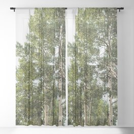 Minimal Forest Treescape II - Nature Photography Sheer Curtain